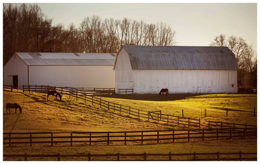 southern maryland photography14