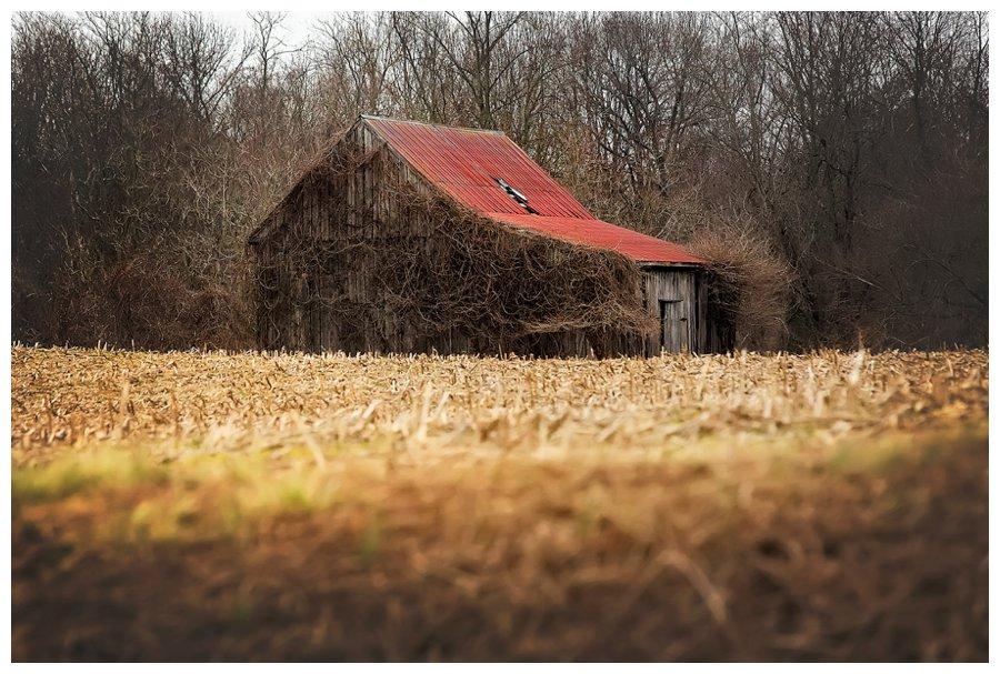 barns of calvert county-21