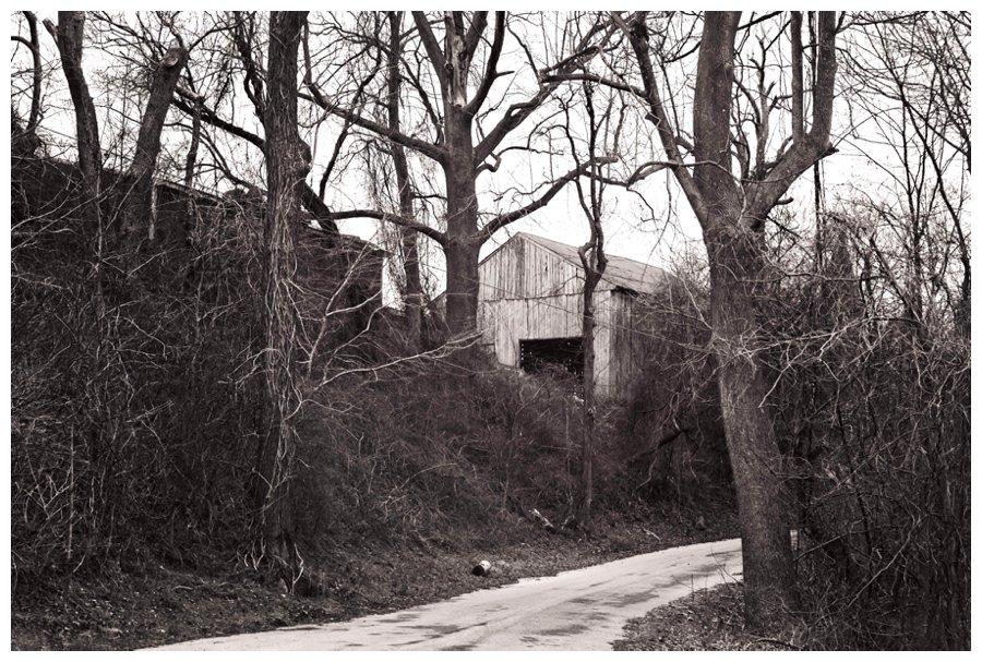 calvert county barns-14