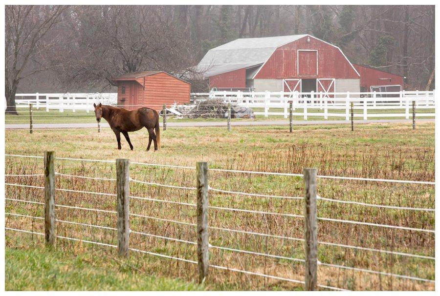 calvert county barns-15