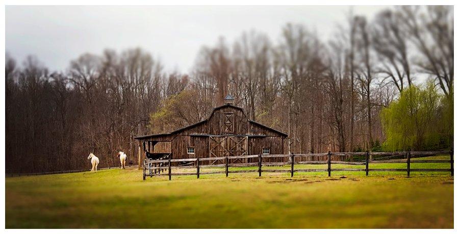 calvert county barns-21