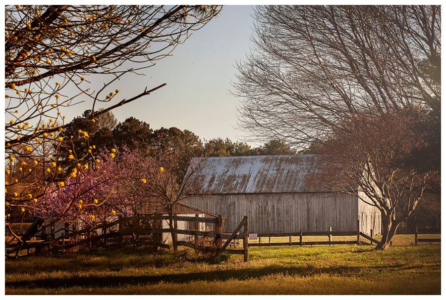 calvert county barns-29
