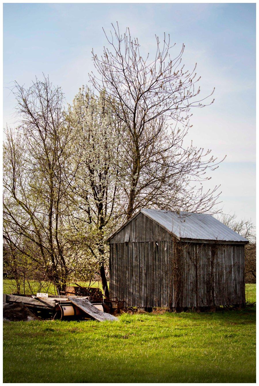 calvert county barns-31