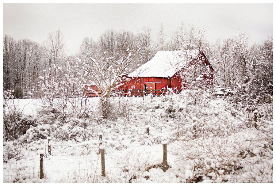 calvert county barns-5