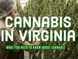 Marijuana Stores in Virginia