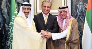 'امارات نے پاکستان کو مشورہ دیا کہ کشمیر کو امت مسلمہ کا مسئلہ نہ بنایا جائے'