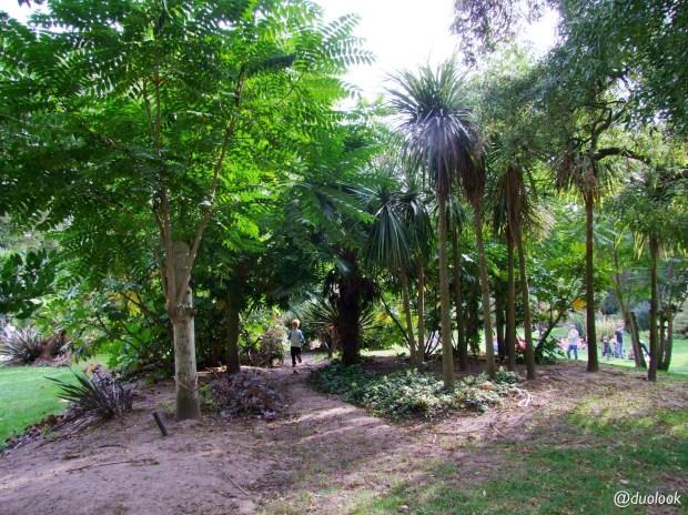 Ogród subtropikalny w Londynie