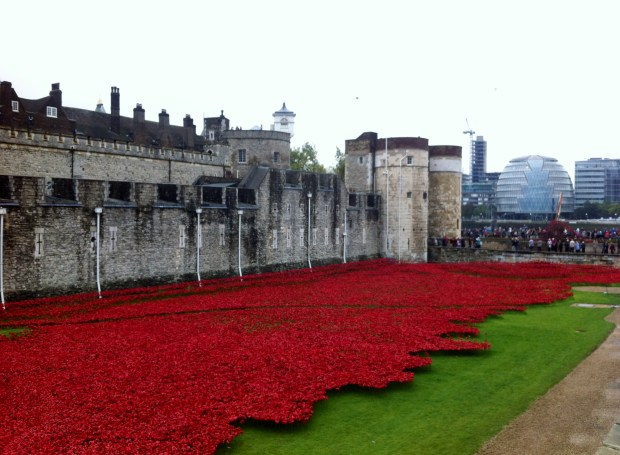 londyn-maki-tower-hill-towerpoppies-poppy-poppies-tower-of-london-fosa-zamku-ofiary-i-wojna-swiatowa-zolnierze-brytyjscy