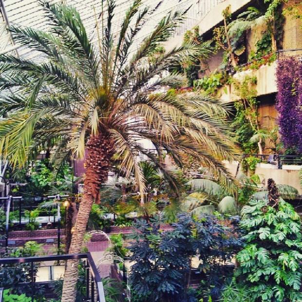 Instameet-Londyn-Gdansk-Instagram-weekend-w-londynie-barbican-conservatory