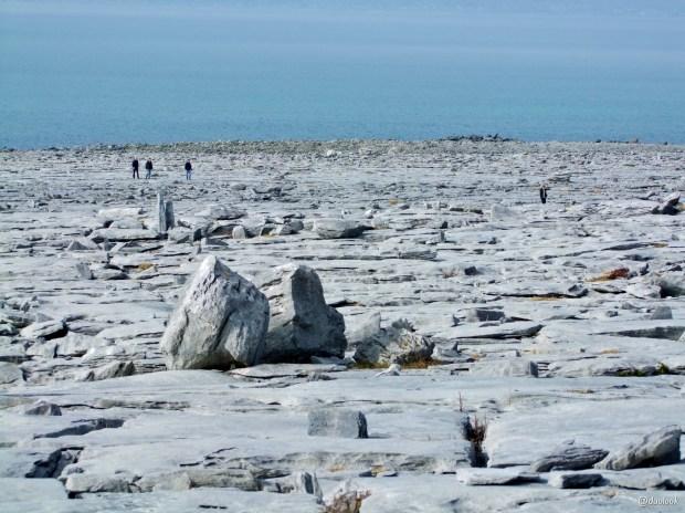 burren-claire-sjaly-wild-atlanltic-way-irlandia-naturalne-atrakcje-10