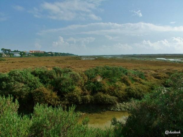 ria-formosa-algarve-quinta-do-lago-portuglia-11
