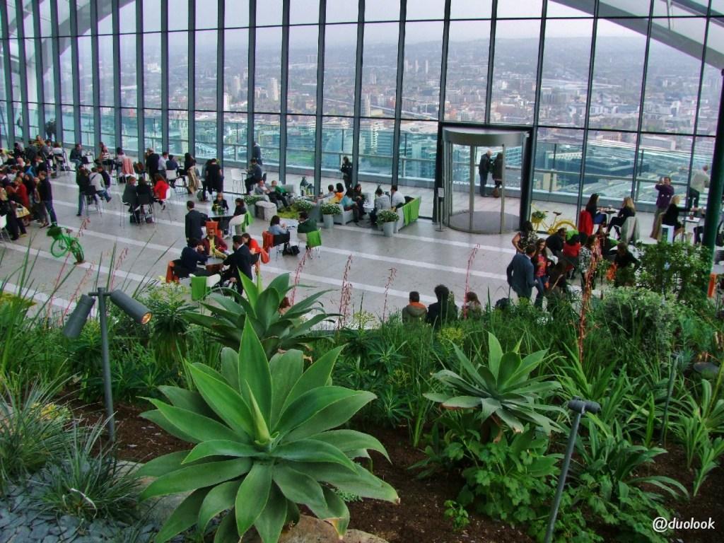 sky garden atrakcje w londynie