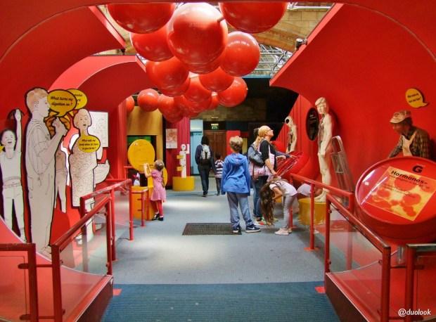 londyn-atrakcje-dla-dzieci-muzeum-historii-naturalnej-05