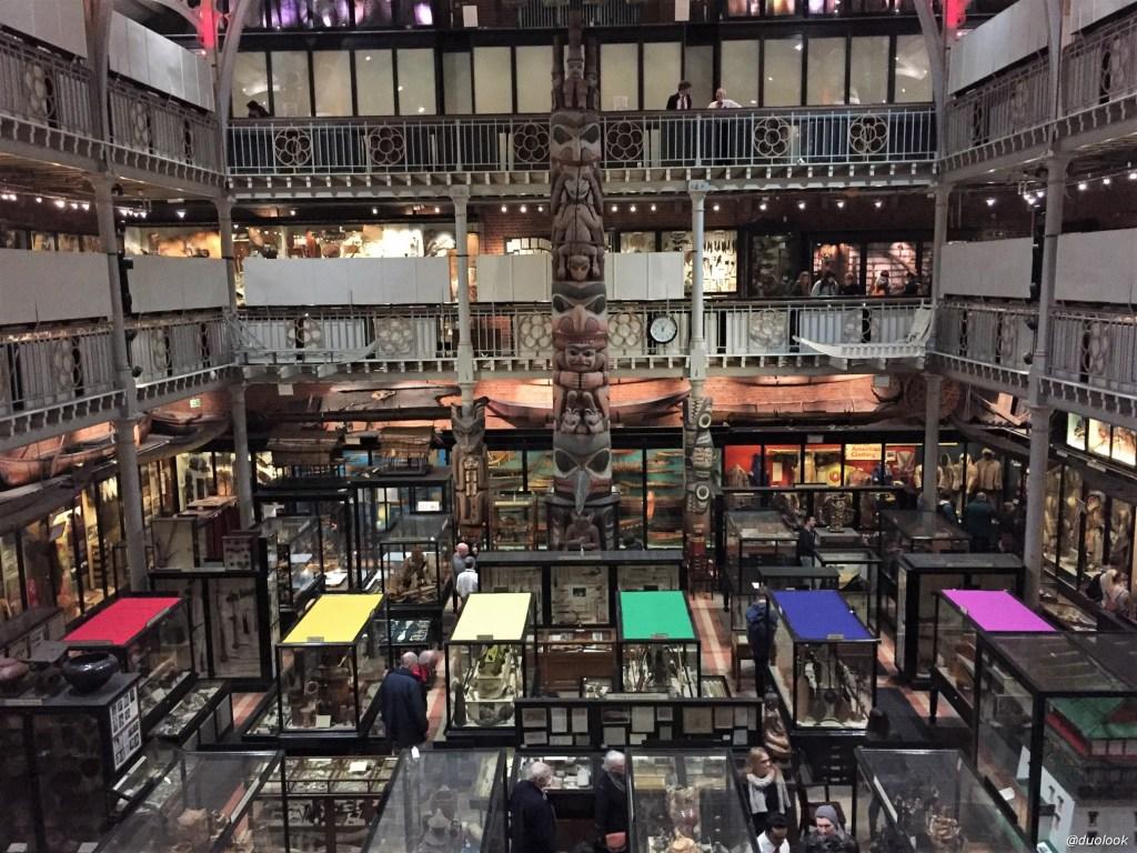 Muzeum Pitt Rivers w Oksfordzie