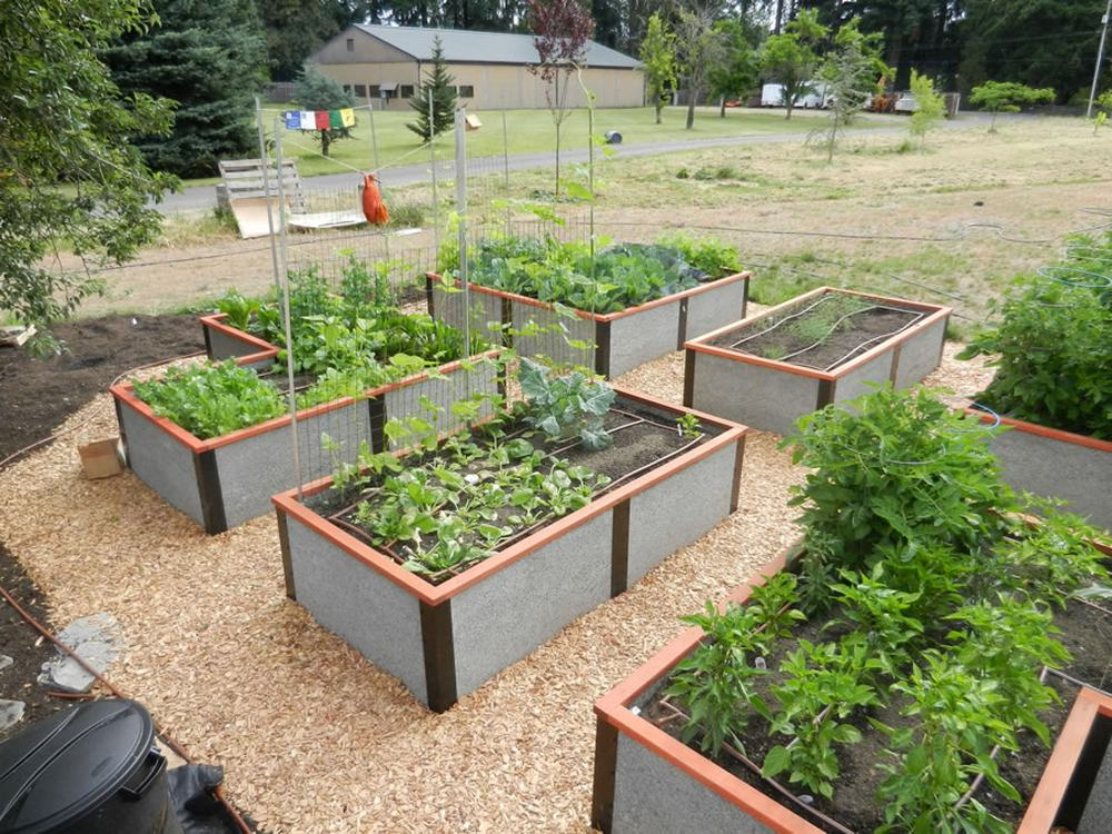 Community Garden Bed Kits For Non Profits Churches