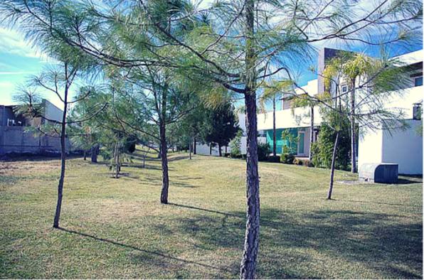Decum Inmobiliaria Privanzas Residencial Arboles en Durango Oficial
