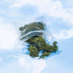 California's Favorite Marijuana Strain In 2016