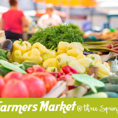 Farmers Market at Three Springs Plaza – Every Thursday