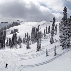 Local Appreciation Days – Wolf Creek Ski