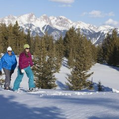 Alpenglow Evening Snowshoe Tours