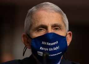 Dr. Fauci: 'It's still not too late to vigorously apply good public-health measures'