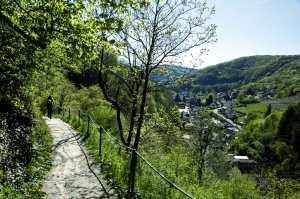 Wanderweg-mit-Blick-auf-Altenahr