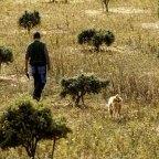 Goldene Existenz für Trüffelbauern