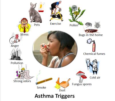 अस्थमा के होने के कारण - (Due to Asthma)