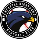 Newcastle Nighthawks Badge