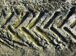 La tierra del Duero marcada por el trabajo