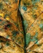 Leaf after Chicago