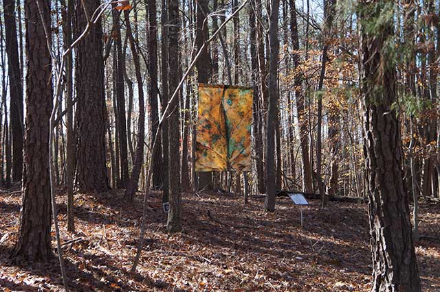 Poetry Walk open for Thanksgiving weekend