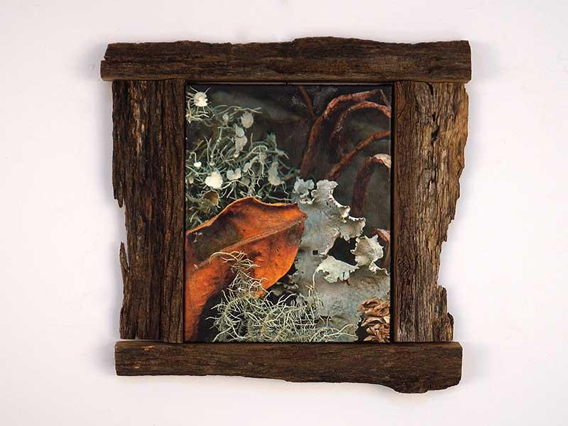 Plants After Kahlo Framed