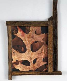 Leaves After Kline (framed)