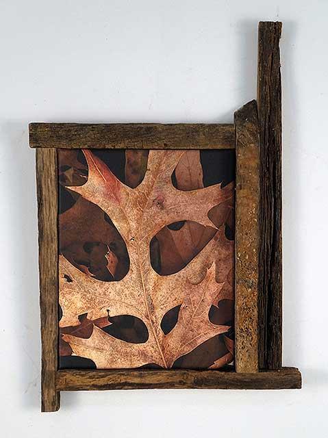 Leaves After Kline (framed)