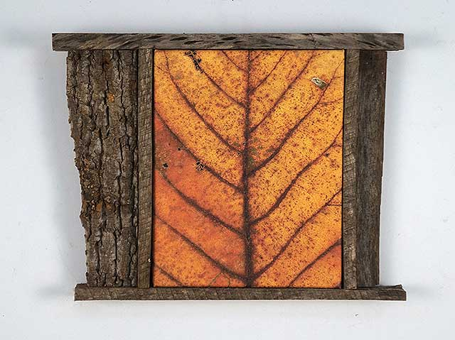 Leaf After tbd (framed)