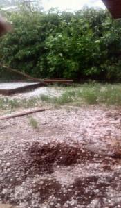hail back yard again