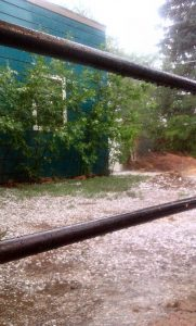 hail back yard