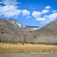 Eklutna in the Spring