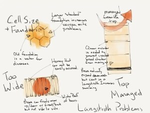 Langstroth Hive, Problems, Natural Beekeeping,