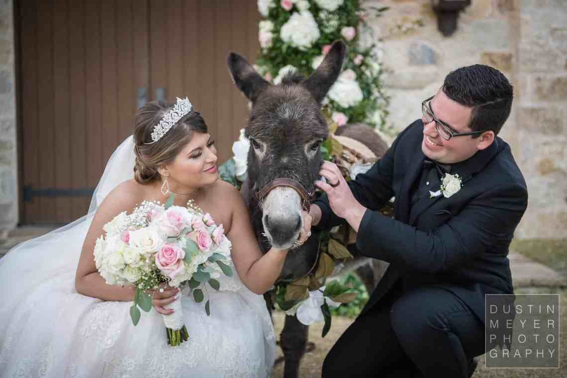 The bride and groom posing for a wedding portrait with a miniature donkey.