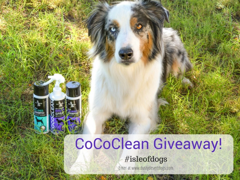 cococlean-giveaway