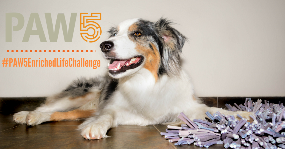 the-enriched-life-challenge