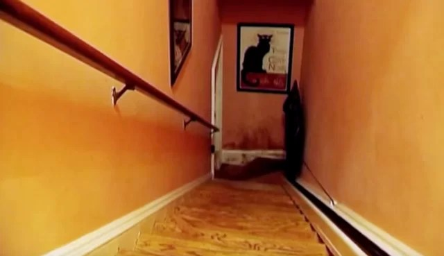 The Staircase fotograflari