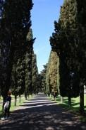 Via Appia Antica czyli witamy w krainie cyprysów!