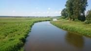 na odcinku Suraż - Łapy rzeka jeszcze nie rozwidla się tak bardzo