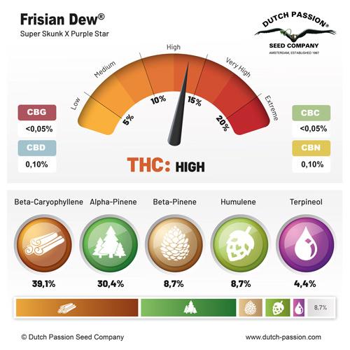 Frisian Dew terpenes and cannabinoids
