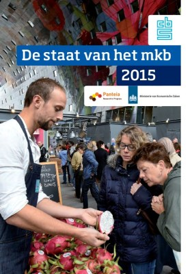 thumbnail of DestaatvanhetMKB2015
