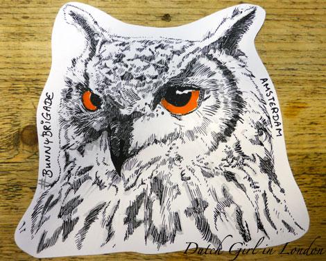drawing-owl BunnyBrigade