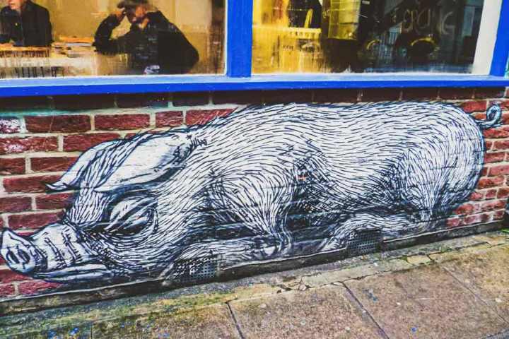 ROA street art of a hog on Sclater Street